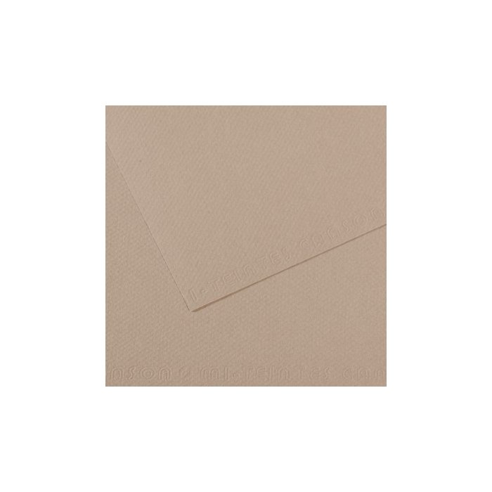 Carton colorat Canson Mi Teintes A4 - flannel grey