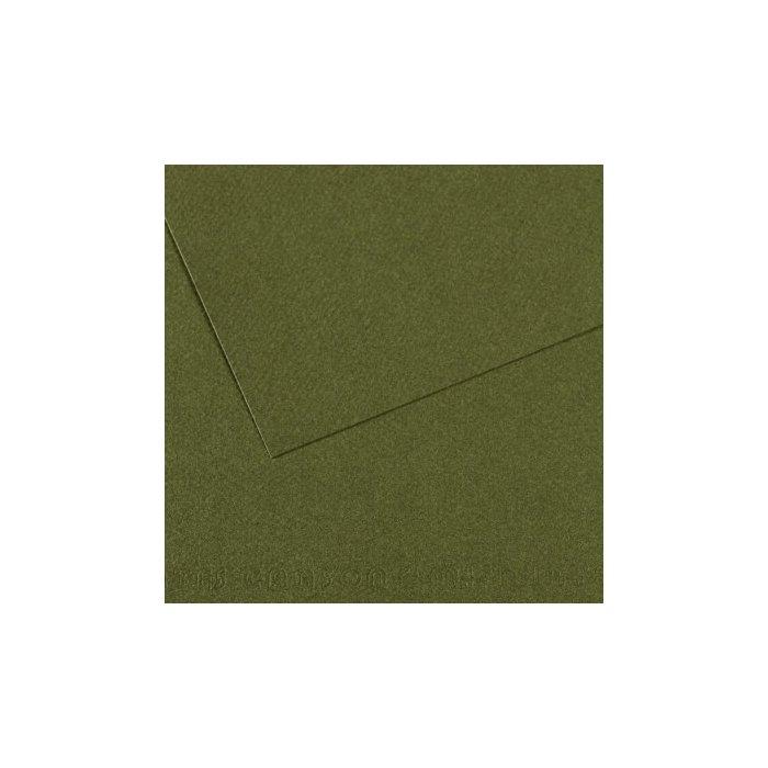 Carton colorat Canson Mi Teintes A4 - ivy