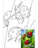 Carton panzat cu desen 20 x 30  cm - Cartoons 4