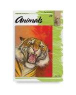 Manual de pictura Animale vol. 12