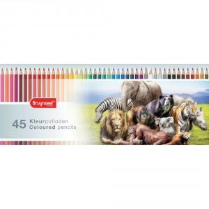 Set creioane colorate Bruynzeel Animals 45