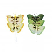 Fluturi decorativi din pene diverse culori