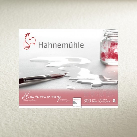 hartie Hahnemuhle Harmony cold pressed