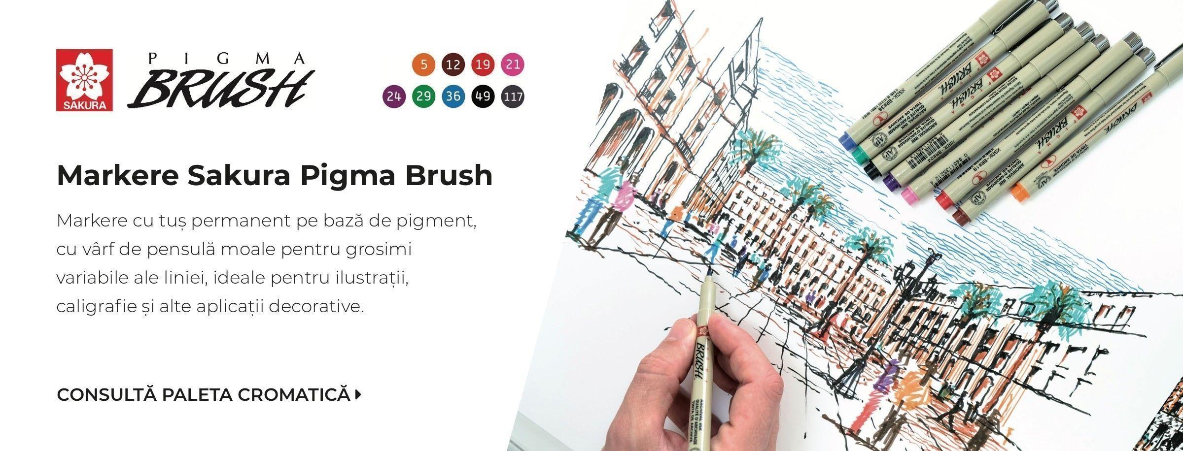 Carioci cu var de pensula Pigma Brush