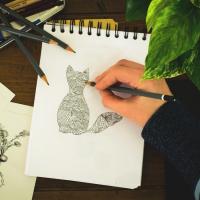 Recomandari pentru desenul in creion. Exercitii simple pentru incepatori